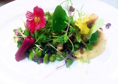 pomona-vegetarian-plate